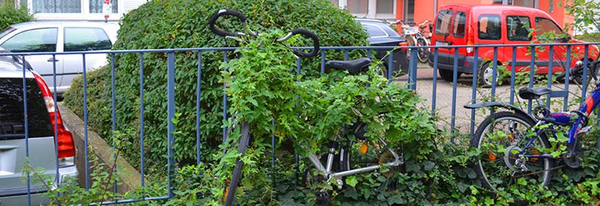 Wohnen Zur Miete Wo Darf Ich Denn Mein Fahrrad Abstellen
