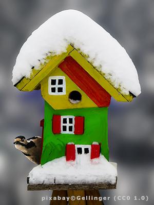 Buntes, schneebedecktes Vogelhäuschen